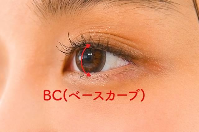 日本人の平均数値は8.6~8.7mm!