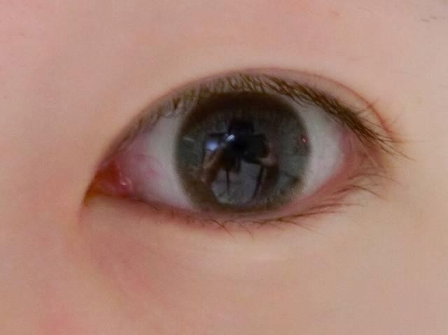 上品で落ち着いたトーンの瞳に変身!