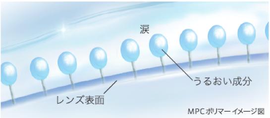 MPCポリマーはヒトの生体膜(細胞膜)を模倣して開発!