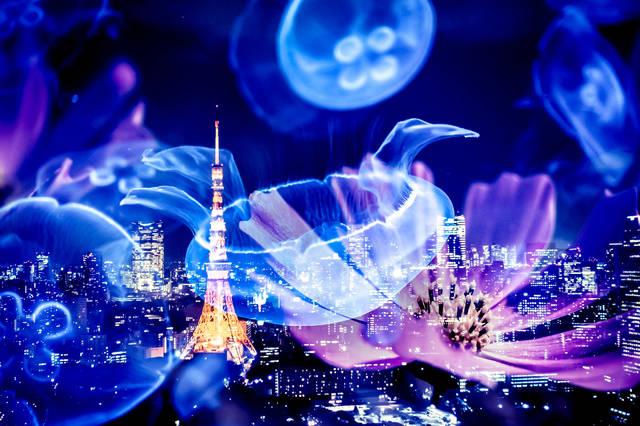 浮かぶくらげと東京タワー|ぱくたそフリー写真素材 (1197)