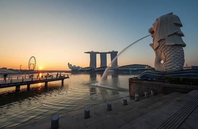 Free photo: Asia, Sea Lion, Core Zone, Lion - Free Image on Pixabay - 1782429 (2193)