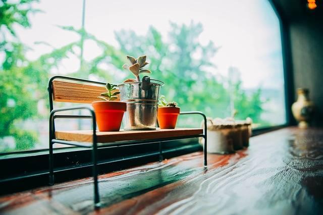 Free photo: Busan, Cafe, Focus, Travel, Coffee - Free Image on Pixabay - 2207302 (9173)