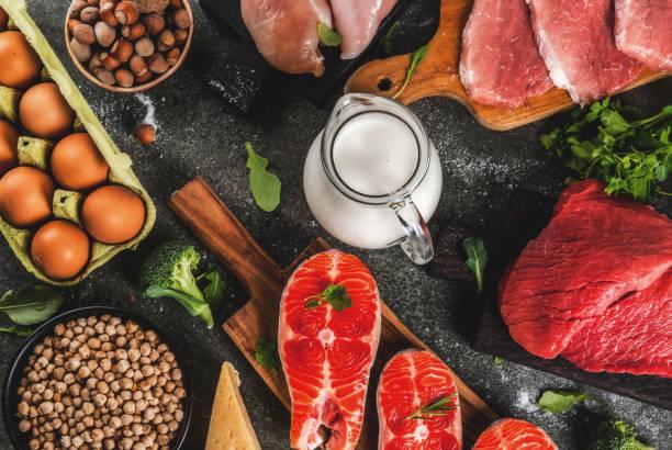 タンパク質には酵素のモトが豊富