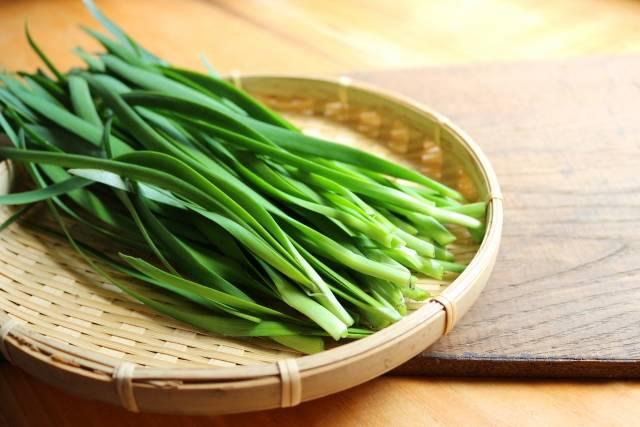 【連載コラム】においの成分が体を温め疲れを取り去る!冬野菜〜にら編