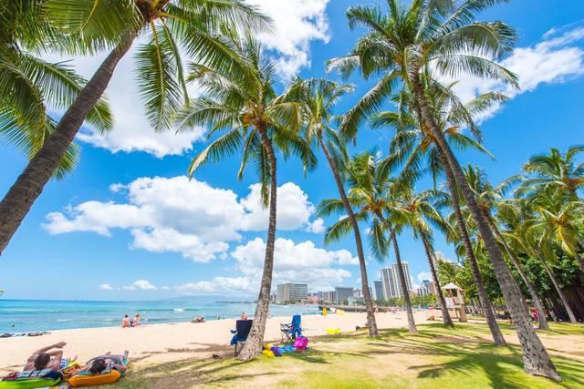 学ぶ・楽しむハワイ!おけいこ留学という新しい旅のカタチとは?