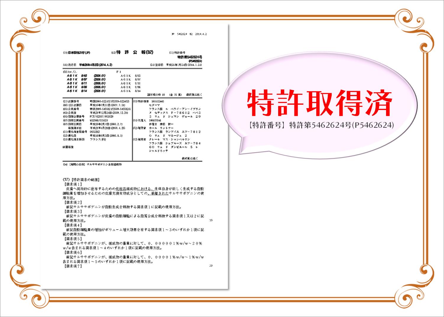 MAPUTI フレグランスバストアップクリーム 特許