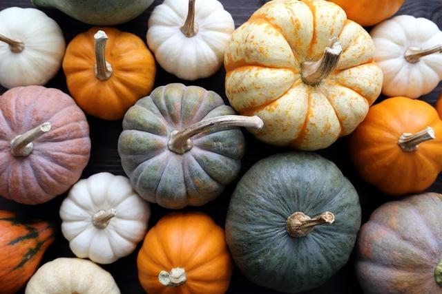 美味しいかぼちゃを食べよ♡魅力を引き出す方法ー選び方から調理まで