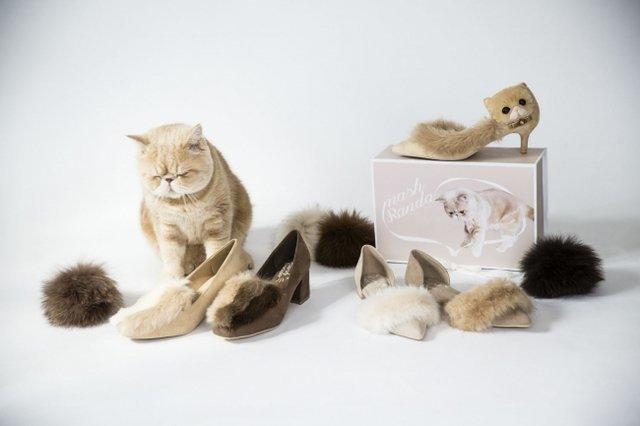 インスタで大人気猫「マッシュ」の可愛い猫シューズが登場しました♡