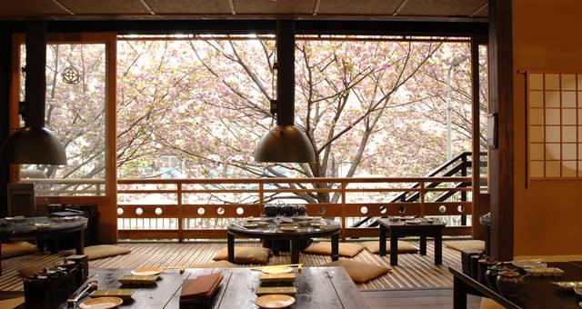 目黒川のお花見はレストランで!夜桜が楽しめるレストラン4選