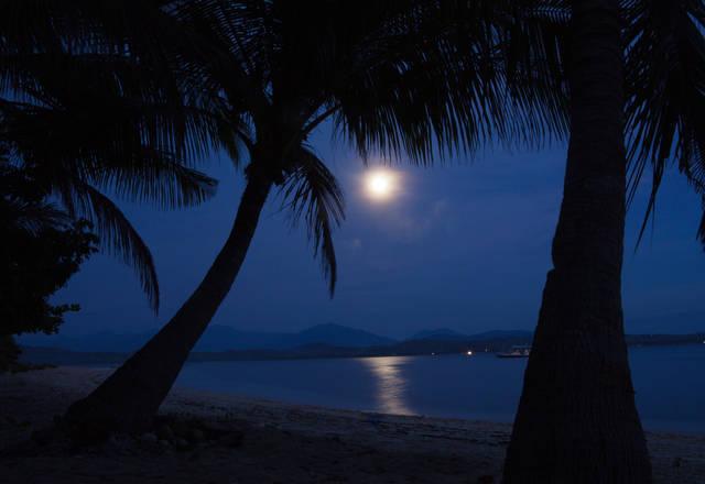 韓国の恋愛映画『夜の海辺で一人』が話題のわけ