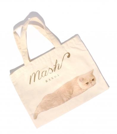 猫のシューズバッグ
