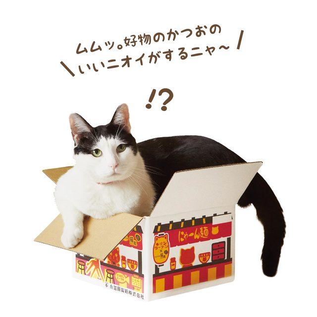 フェリシモ猫部/にゃーん麺/オリジナルボックス