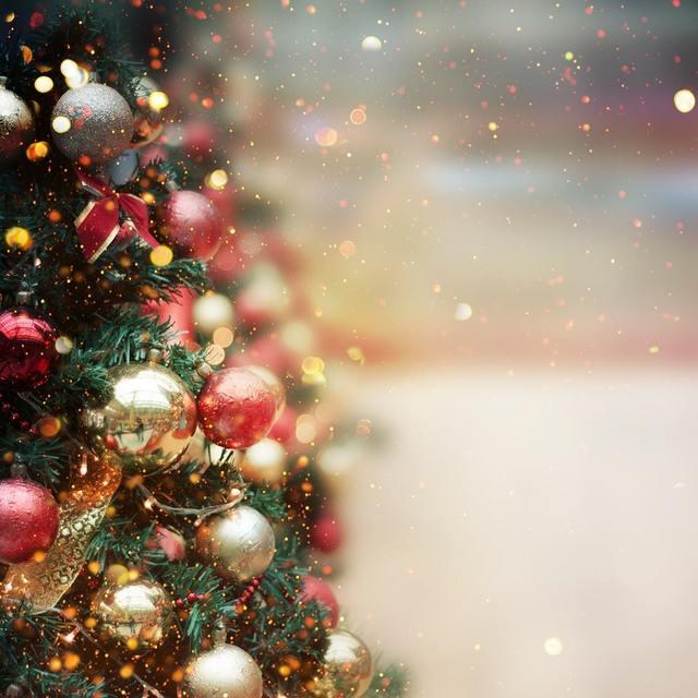 クリスマスなのに予約忘れ!素敵な思い出が残る過ごし方