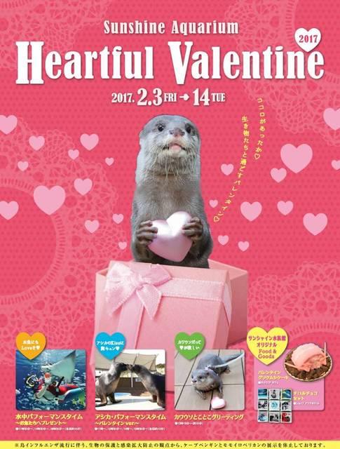 バレンタインデート 東京 サンシャイン水族館