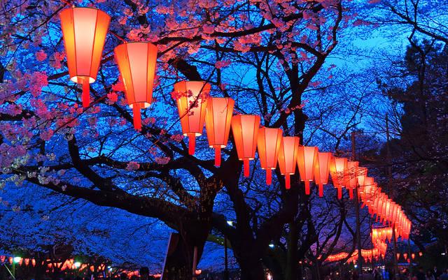 上野 観光スポット 上野公園 うえの桜まつり
