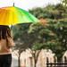髪のうねりを解決して、雨の日を乗り切ろう!