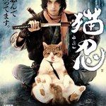 『猫侍』に続き『猫忍』が放送開始!ぽっちゃり猫×イケメンで癒される。