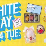 【2017年】ホワイトデー♡におススメな『PLAZA』&『KALDI』のお菓子やスイーツ、アイテムのまとめ