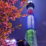 東京スカイツリー周辺・ソラマチでインスタ映えするおしゃれなカフェやスイーツ人気スポット♡