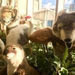 カピバラさんフクロウさんハリネズミさん達と遊べるよ!みなとみらい、動物とふれあえるパーク『オービィ横浜』の場所