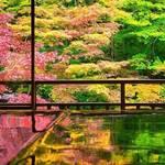【京都】秋だ🍁そうだ❣京都に行こう💖古都らしさがイイ👍インスタ映えスポット10選❣