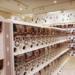 【東京・大阪】ガチャガチャの森『イオンモールむさし村山店」と『イオンモール堺鉄砲町店』がオープンするよ🎵