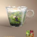 【新発売】LAVAZZA(ラバッツァ)発✨サステイナブルコーヒー☕『¡TIERRA!(ティエラ)』