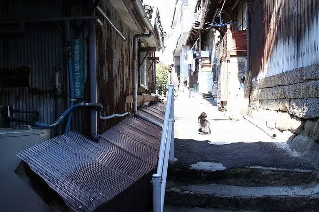 路地裏 (Alley)