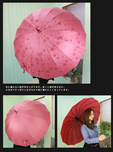 雨に濡れると満開のお花が浮き出てくる☆