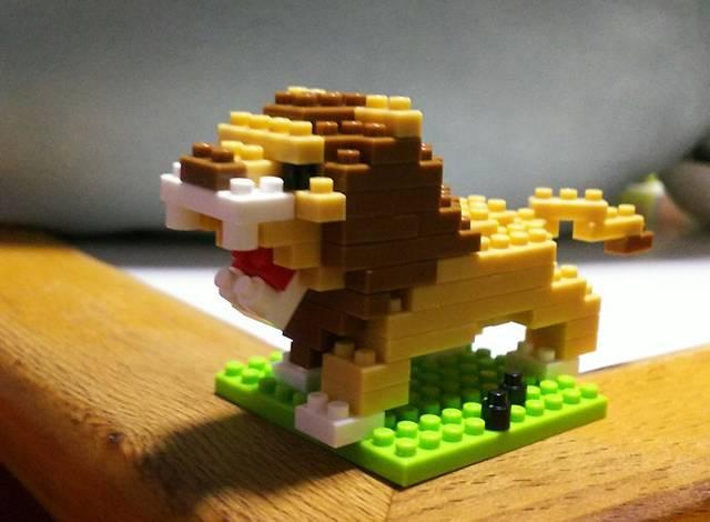 ライオンがカッコいい(*'▽')