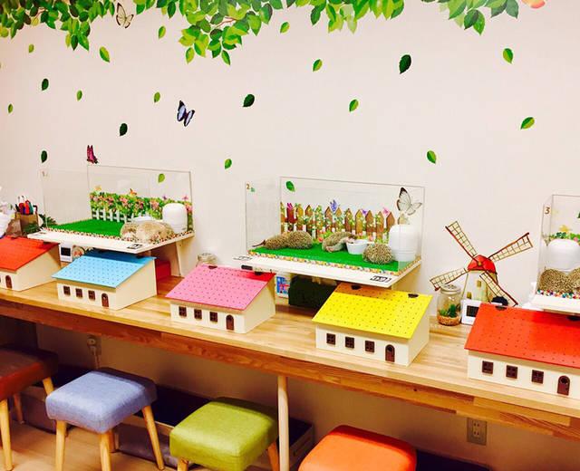 ハリネズミとデグーのお店 HAGU CAFE(ハグカフェ) (36587)