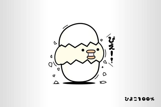 ■ひよこさん