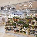 ダイソーの新ブランド『Natural Coordinate』2021年4月オープン