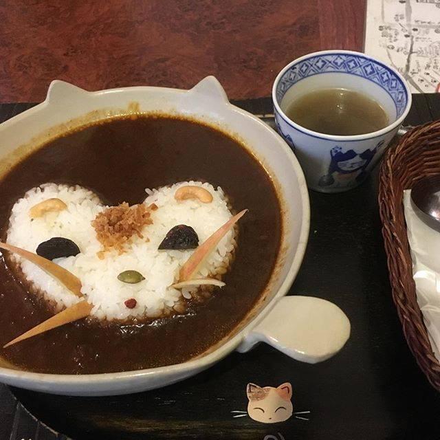 【フォトジェニック】看板猫のいるカフェ巡り「ねんねこ家」