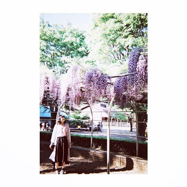 Instagram (24596)