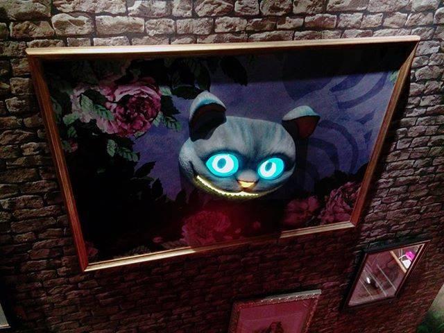 """みさみさ on Instagram: """"チシャ猫の目がずっとわたしを追いかけてました#水曜日のアリス #水曜日のアリス原宿 #不思議の国のアリス #チシャ猫 #写真好きな人と繋がりたい #アリス"""" (58180)"""