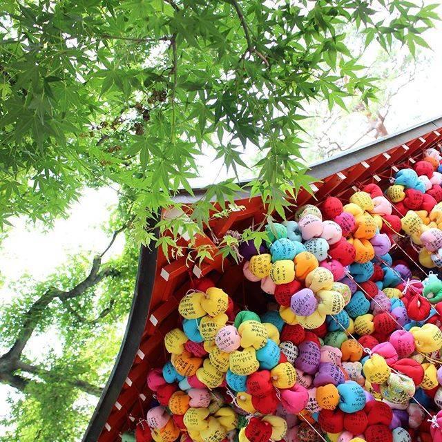 "Ono Kurumi ⋆ on Instagram: ""⋆ #八坂庚申堂#紅葉 / #京都#四条 ⋆…"" (59519)"