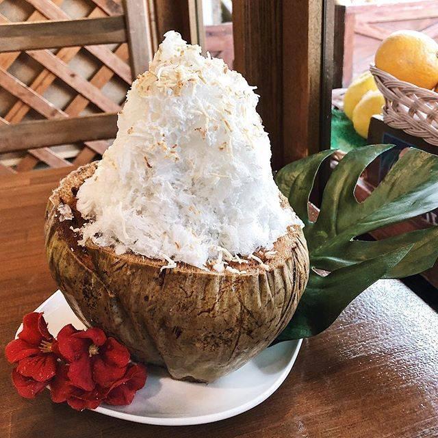 """@misea_91 on Instagram: """"🥥.始まりました🎐.今年初の山口さんは大好きなこれで開始です。 ...#ココナッツ#かき氷 #山口果物"""" (60444)"""