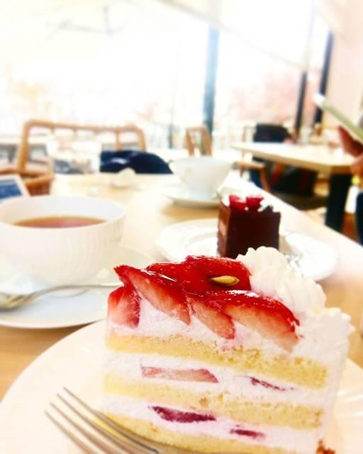 """castle maki on Instagram: """"#patisserietoothtooth SeaSide Cafe でランチのデザートにガトーフレーズを。ふんわりスポンジと甘酸っぱいジューシーなストロベリー🍓。いつもとってもしあわせな気持ちになります。何度いただいてもあきません🍰💕おいしかったです😋🍴💕…"""" (62010)"""