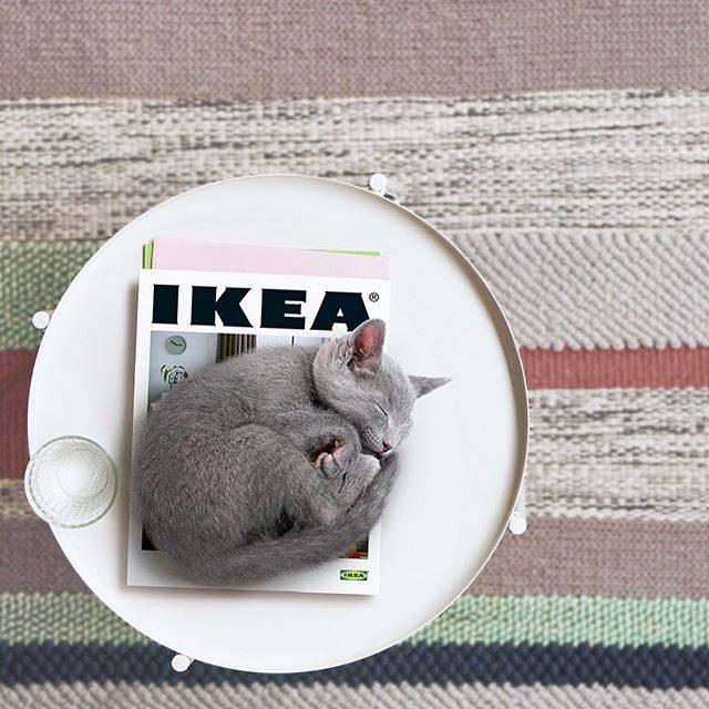 """IKEA JAPAN on Instagram: """"もうすぐ『IKEAカタログ 2019』がやってくる!   『IKEAカタログ 2019』では、暮らし方の多様性にスポットライトをあて、それぞれ異なる生活環境やストーリーを持った「家」を紹介しています。 …"""" (69573)"""