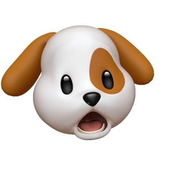 "@motomix on Instagram: ""今日のwho's nextでイベント中に熱唱する犬🐶#whosnext #石川町クリブ #横浜 #DJ #neyo #エハラアニ文字 #アニ文字"" (69965)"