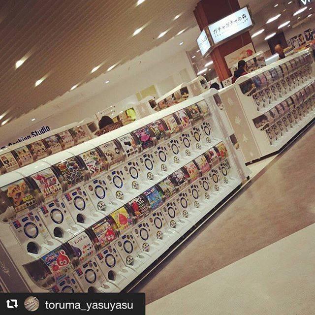 """ガチャガチャの森インスタ部 on Instagram: """"ご来店ありがとうございます😊 フォロー&リポストさせて頂きます^ ^ これからも宜しくお願いします(^o^)/ #ガチャガチャの森インスタ部  #repost @toruma_yasuyasu via @PhotoAroundApp…"""" (76308)"""