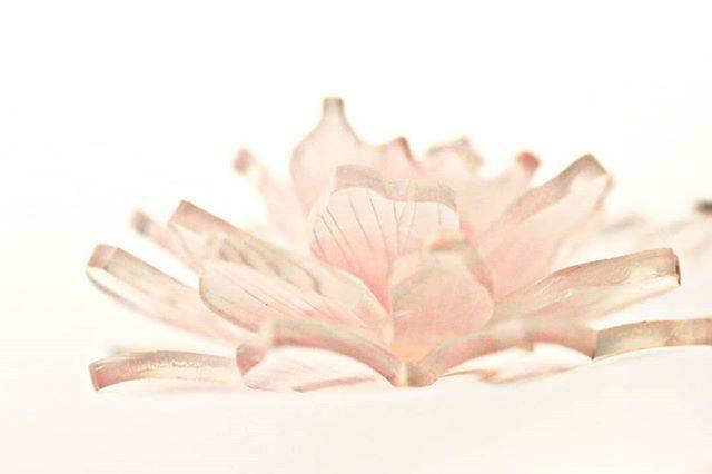 """しばさおり-jasmine mascot on Instagram: """"芍薬の花 . 横から眺めても可愛いと思います(*^^*) . #立体プラバン #プラバン #プラ板 #アクセサリー #ハンドメイド #アート #癒し #かわいい #シンプル #手作り #花 #ザ花部 #花のある暮らし#ナチュラル #和菓子…"""" (81613)"""