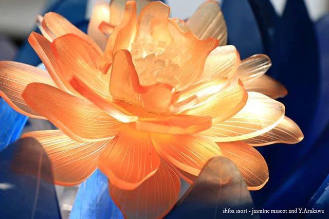 """しばさおり-jasmine mascot on Instagram: """"橙の芍薬。部屋に日が差して内から輝く様に撮れました。夢中になって撮影しました。 . 今週開催の日本ホビーショーではタミヤさんブースでワークショップ&実演をします。 . 写真の花を始め30点程展示予定です。 . ご来場お待ちしております✨ . 詳細 . 4/25-27…"""" (81628)"""