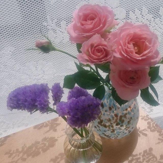 "@misoflavor on Instagram: ""#スターチス 💠 #ミニバラ 🌹右の花瓶は #吹きガラス体験 #ガラス工房zo#rose#statise#一輪挿しバラがすごくいい匂い"" (82064)"