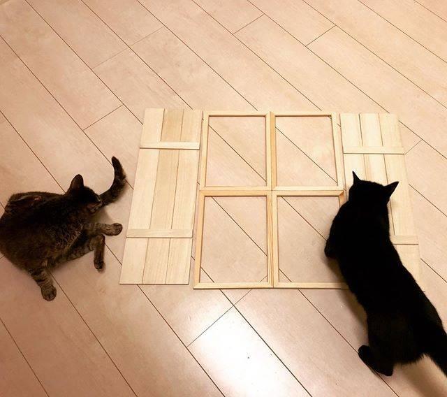 "Kaori Otsubo on Instagram: ""製作中のものを床に置いてみたら集まる猫たち 笑面白くないとわかったらあっという間に散っていきました(´・ω・`) #100均手作り #100均インテリア#猫"" (88806)"