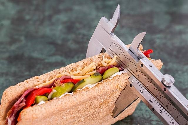 Free photo: Diet, Calorie Counter, Weight Loss - Free Image on Pixabay - 695723 (46347)