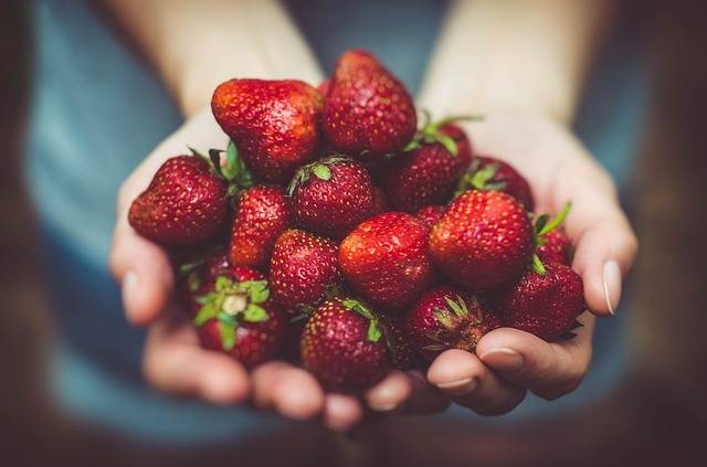 Strawberries Fruits Close-Up · Free photo on Pixabay (63674)