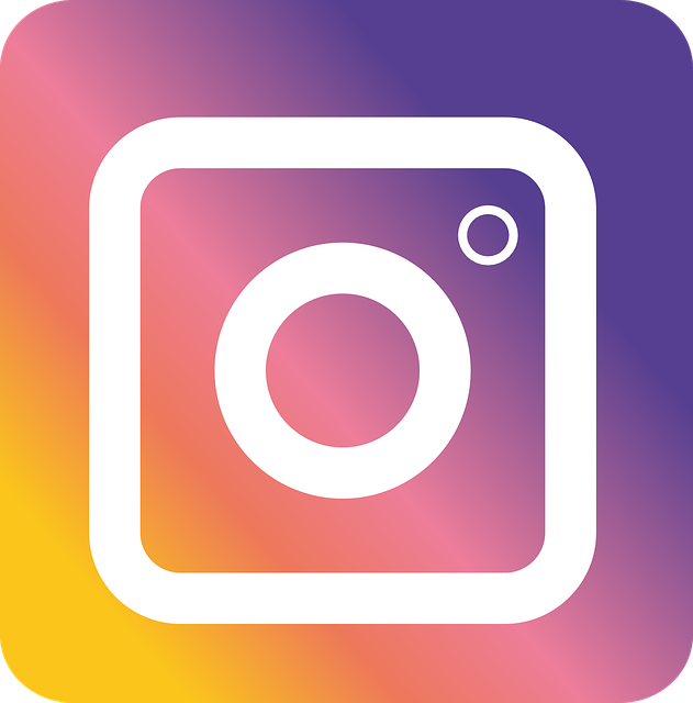 Instagram Insta Logo New · Free vector graphic on Pixabay (69305)
