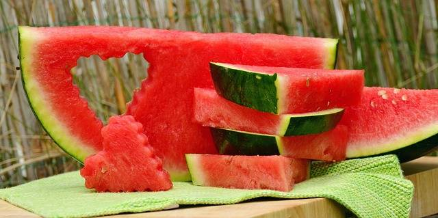 Melon Watermelon Fruit - Free photo on Pixabay (84673)